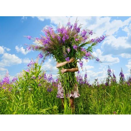 Immense bouquet de fleurs, impression sur papier peint intissé, Imprim'Déco spécialiste du grand format