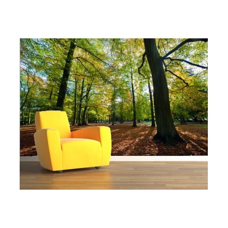 Sous bois au tapis de feuilles, impression sur papier peint intissé, Imprim'Déco spécialiste du grand format