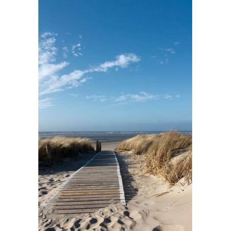 Ponton dans les dunes, impression sur papier peint intissé, Imprim'Déco spécialiste du grand format