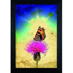 Tableau Papillon sur une fleur