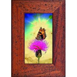 Tableau Papillon sur une fleur 2