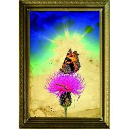Tableau Papillon sur une fleur 3