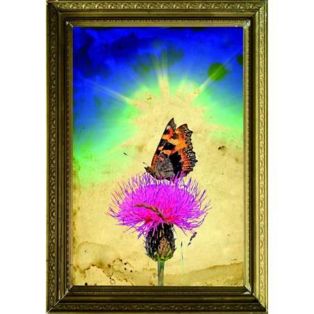 Tableau Papillon sur une fleur 3, exclusivité de Imprim'Déco, magasin en ligne spécialisé en déco murale