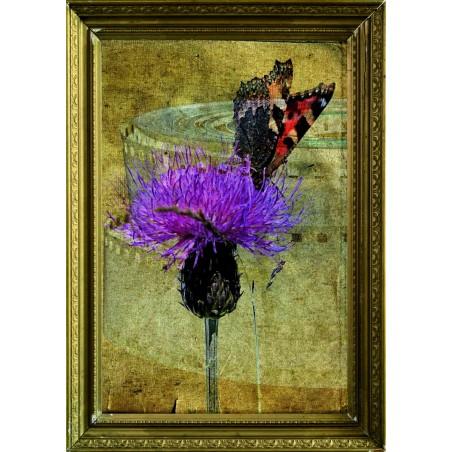 Tableau Papillon sur une fleur 4, exclusivité de Imprim'Déco, magasin en ligne spécialisé en déco murale