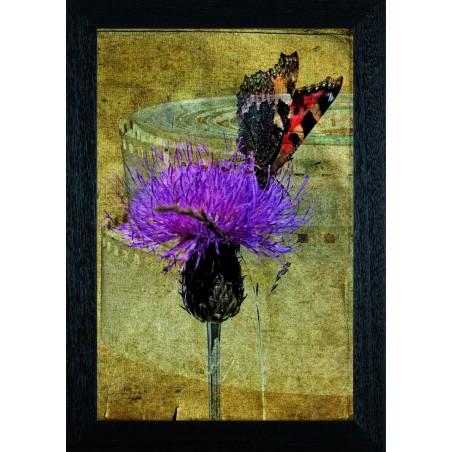 Tableau Papillon sur une fleur 5, exclusivité de Imprim'Déco, magasin en ligne spécialisé en déco murale