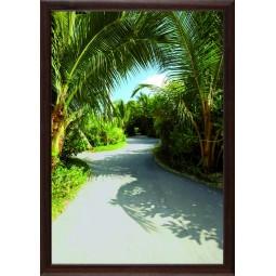 Tableau Chemin dans les palmiers, exclusivité de Imprim'Déco, magasin en ligne spécialisé en déco murale