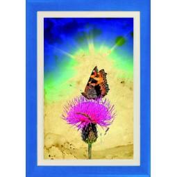 Tableau Papillon sur une fleur 8, exclusivité de Imprim'Déco, magasin en ligne spécialisé en déco murale