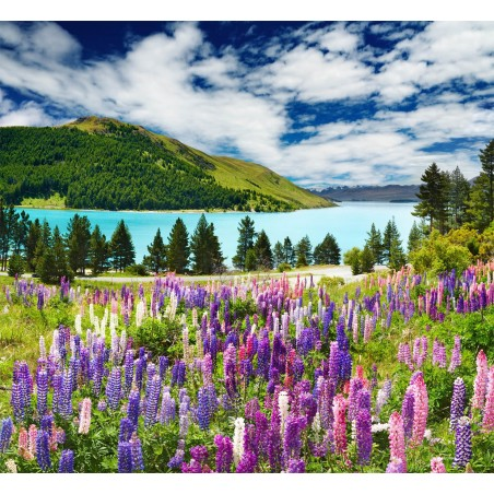 Bord de lac fleuri , impression sur Déco'R,  Imprim'Déco spécialiste du grand format