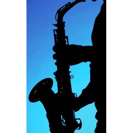 Saxophoniste , impression sur Déco'R,  Imprim'Déco spécialiste du grand format