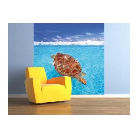 Tortue de mer, impression sur Déco'R, Imprim'Déco spécialiste du grand format