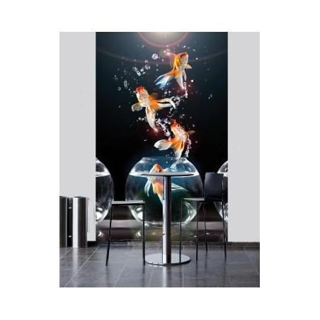 Poissons acrobates, impression sur Déco'R, Imprim'Déco spécialiste du grand format