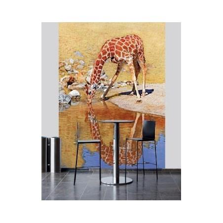 Girafe à la rivière, impression sur Déco'R, Imprim'Déco spécialiste du grand format