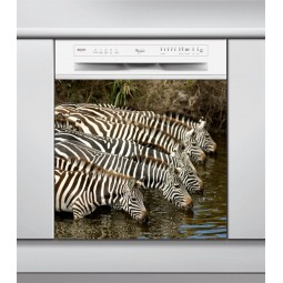 Sticker lave vaisselle les zèbres qui boivent