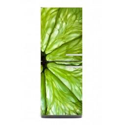 Sticker décor de frigo agrume vert, exclusivité Imprim'Déco