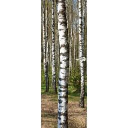 Sticker Décor de porte arbres