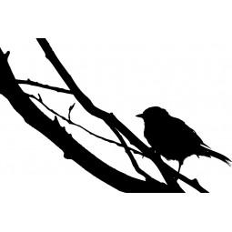 Sticker mural oiseaux sur la branche