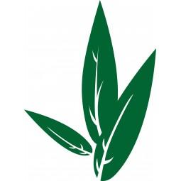 Sticker mural feuilles