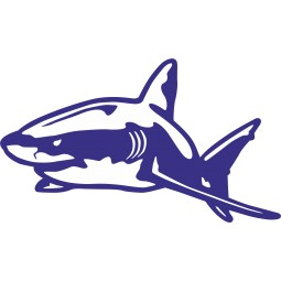 Sticker gentil requin