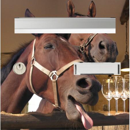 adhésif pour boîte aux lettres les chevaux