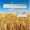 sticker adhésif boîte aux lettres champ de blé