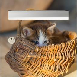 sticker boîte aux lettres chaton