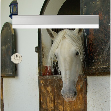 sticker de boîte aux lettres tête cheval