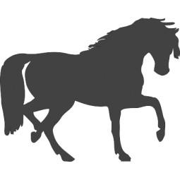 sticker mural cheval élégant