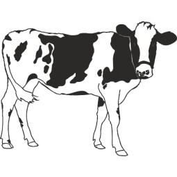 sticker vache normande